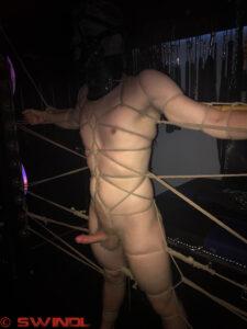 Boy In A Web